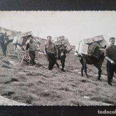 Postales: VERA DE BIDASOA NAVARRA MONTE LARUN TRANSPORTE MERCANCIAS. Lote 191604952