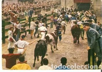 POSTAL PAMPLONA. LOS TOROS ENTRAN EN LA PLAZA DE TOROS. 73-225 (Postales - España - Navarra Moderna (desde 1.940))