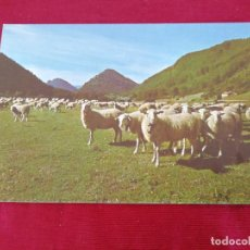 Postales: ISABA. NAVARRA. Lote 205140765