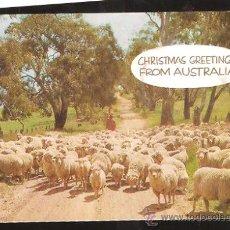 Postales: FELICITACIÓN NAVIDAD AUSTRALIA * DROVING SJEEP ON A COUNTRY ROAD * 1970. Lote 30237408