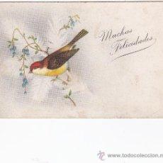 Postales: POSTAL FELICIDADES (SIN CIRCULAR). Lote 31133994