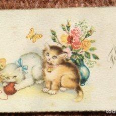 Postales: TARJETAS DE FELICIDADES DE GATITOS. Lote 177779595