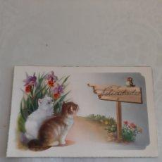 Postales: FELICITACIÓN NAVIDEÑA C Y Z 517 1957. Lote 213682000