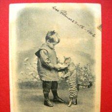 Postales: POSTAL ANTIGUA ORIGINAL. NIÑO DANDO DE COMER A UN GATO. AÑO 1902. Lote 21566491