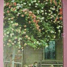 Postales: 456 NIÑOS NIÑO CHILDREN ENFANT BAMBINO NENO PRECIOSA AÑOS 1900 C&C. Lote 3352100