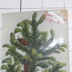 Postales: POSTAL INFANTIL AÑO 1909 RARA. Lote 61289294