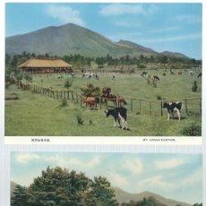 Postales: 2 POSTALES DE GANADERIAS EN JAPON SIN CIRCULAR. Lote 63525492
