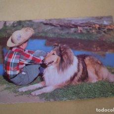 Postales: POSTAL FOTOGRAFICA AÑOS 50 NIÑO CON PERRO - SIN CIRCULAR. Lote 75269243