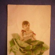 Postales: TARJETA POSTAL. NIÑO SOBRE UNA COL. (FABRICATION FRANÇAISE). Lote 164613718