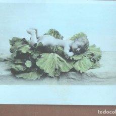 Postales: POSTAL NIÑO DESNUDO SOBRE COL. ´KC ÉDITEURS D'ART PARIS 2229. 1908. ESCRITA. Lote 238177070