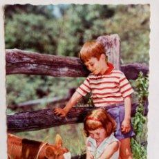Postales: POSTAL NIÑOS GRANJA CAMPO - EDICIONES CYZ. Lote 245605235