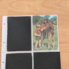 Postales: ANTIGUA POSTAL «NIÑO CON CABALLO». Lote 246352660