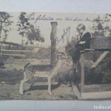 Postales: POSTAL DE NIÑO CON CERVATILLO , PRINCIPIOS DE SIGLO. CIRCULADA CON SELLO DE ALFONSO XIII NIÑO. Lote 278363498