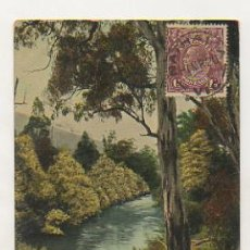 Postales: AUSTRALIA. ON THE BANKS OF THE YARRA, WARBURTON. VICTORIA. . Lote 18349629