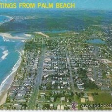 Postales: *-* PW - 1420 - POSTAL - GREETINGS FROM PALM BEACH . Lote 35771492