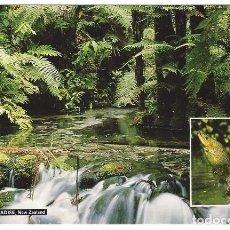 Postales: NUEVA ZELANDA 1998 - POSTAL CIRCULADA, CON SELLO. Lote 97706275