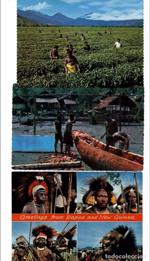LOTE DE 121 POSTALES Y VISTAS DE NUEVA GUINEA. AÑOS 1960 (Postales - Postales Extranjero - Oceanía)