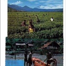 Postales: LOTE DE 121 POSTALES Y VISTAS DE NUEVA GUINEA. AÑOS 1960. Lote 103417103