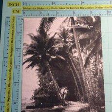 Postales: POSTAL DE FILIPINAS. AÑOS 30 50. PALAO, MISIÓN CAROLINAS. COCOTALES. 1453. Lote 104557211