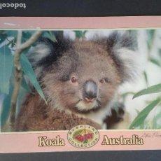 Postales: POSTAL AUSTRALIA. Lote 146042274