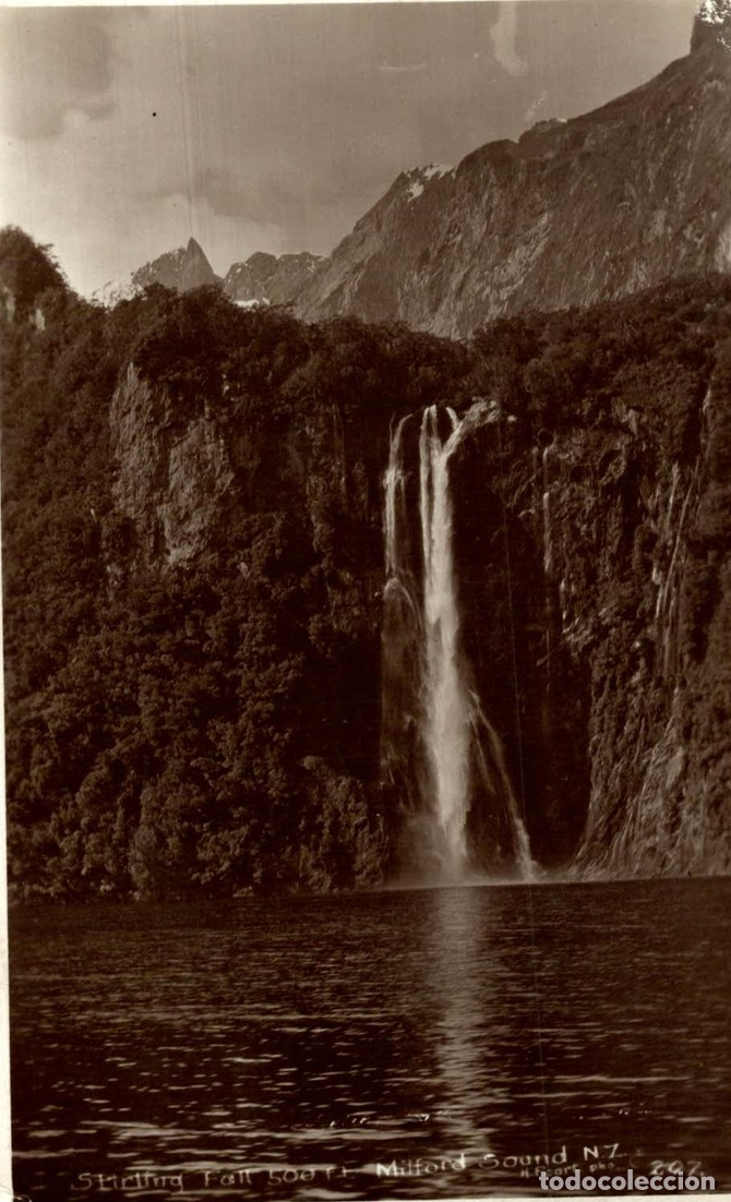 STIRLING FALL, MILFORD SOUND NEW ZEALAND POST CARD (Postales - Postales Extranjero - Oceanía)