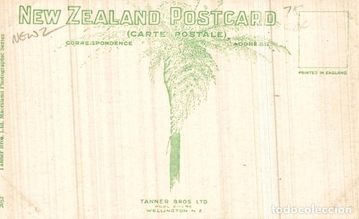 Postales: POHUTOROA AT ATIAMURI NEW ZEALAND POST CARD - Foto 2 - 183334480
