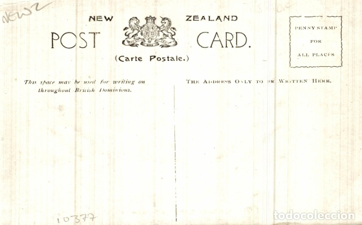 Postales: THE BASIN, WAIMANGU GEYSER NEW ZEALAND POST CARD - Foto 2 - 183334908