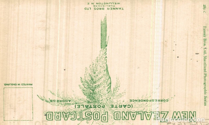 Postales: SUNRISE, TASMAN GLACIER NEW ZEALAND POST CARD - Foto 2 - 183334962