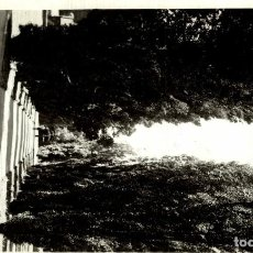 Postales: VALENTINE SERIES - POLAR AVENUE FITZROY GARDENS, MELBOURNE - AUSTRALIA. Lote 184513787