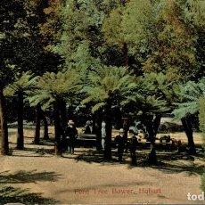 Postales: FERN TREE BOWER HOBART SEE LEFT CORNER - AUSTRALIE -- TASMANIA -. Lote 184514135