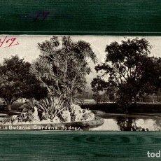Postales: A VIEW IN BOTANIC GARDEN SYDNEY AUSTRALIA OCEANIA. Lote 184514676
