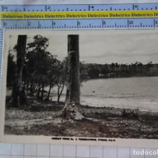 Postales: POSTAL DE AUSTRALIA. MURRAY VIEWS WYONG . 2683. Lote 192677838