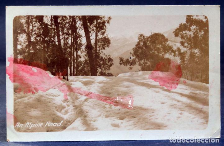 POSTAL FOTOGRÁFICA AUSTRALIA AN ALPINE ROAD THE GREAT ALPINE ROAD ESCRITA HACIA 1912 (Postales - Postales Extranjero - Oceanía)