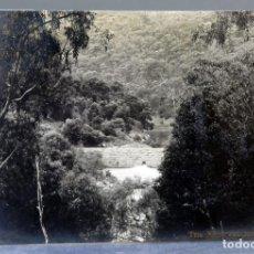 Postales: POSTAL FOTOGRÁFICA THE MITCHELL RIVER WEIR AUSTRALIA ESCRITA HACIA 1910. Lote 195106411