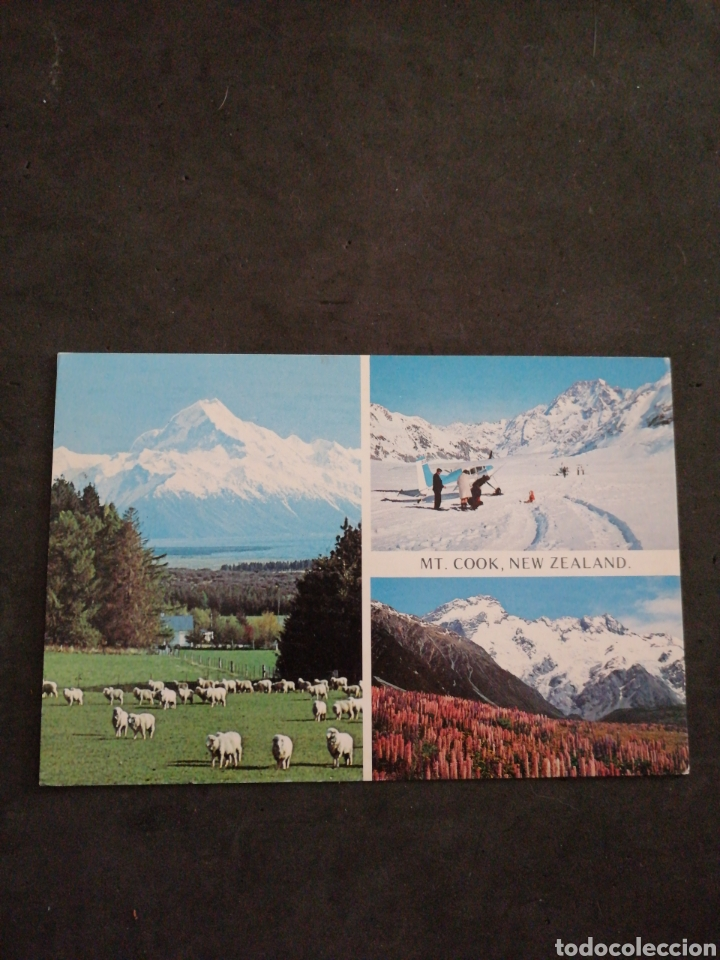 NEW ZEALAND BONITA POSTAL (Postales - Postales Extranjero - Oceanía)