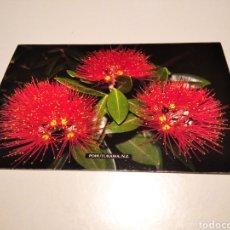 Postales: POSTAL FLORES POHUTUKAWA, SELLOS NUEVA ZELANDA. Lote 233454530