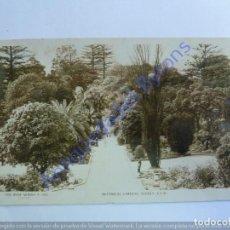 Postales: BOTANICAL GARDENS. SYDNEY. AUSTRALIA. Lote 240698495