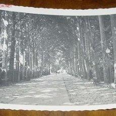 Postales: ANTIGUA POSTAL DE VITORIA . LA FLORIDA - PASEO DE LA SENDA - ARRIBAS - NO CIRCULADA. Lote 20976201
