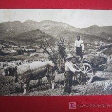 Postales: PAIS VASCO. Lote 16230867