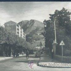 Postales: POSTAL DE TOLOSA Nº 5 ( GUIPUZCOA ) PASEO DE SAN FRANCISCO P-PV-1306. Lote 29021749