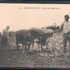 Postales: TARJETA POSTAL DE SAN SEBASTIAN - ESCENA DEL CAMPO VASCO. 157. EDICION G.G.GALARZA. Lote 31857186