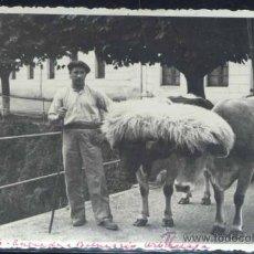 Postales: URBERUAGA DE UBILLA (VIZCAYA).- ENTRADA AL BALNEARIO- FOTOGRAFÍA. Lote 34191862
