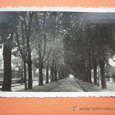 Postales: VITORIA. PARQUE DE LA FLORIDA. ED. ARRIBAS Nº 74. Lote 36112950