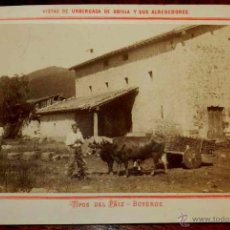 Postales: ANTIGUA FOTOGRAFIA ALBUMINA DE URBERUAGA DE UBILLA (VIZCAYA) Y SUS ALREDEDORES, TIPOS DEL PAIS, BOYE. Lote 39606536