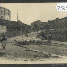 Postales: FUENTERRABIA - HONDARRIBIA - 65 - PASTOR PIRENAICO - ND FOT - (ZB-122). Lote 47310396