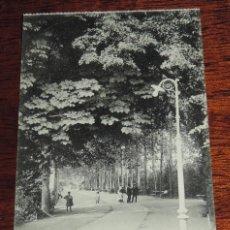 Postales: VITORIA, PASEO DE LA SENDA, LIBRERIA GENERAL, SIN CIRCULAR. Lote 49032792