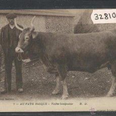 Postales: EUSKAL HERRIA - PAIS VASCO - 7 M.D. - VACA VASCA - (32810). Lote 49891854