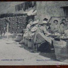 Postales: GUETARIA (GUIPUZCOA), LABORES DE ESCABECHE, ALEJANDRA SORRELUZ, FOT. LACOSTE, SIN CIRCULAR. Lote 50385050