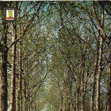 Cartes Postales: VITORIA - 16 PASEO DE LA SENDA. Lote 54293820