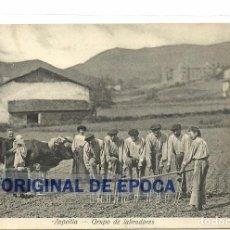 Postais: (PS-50351)POSTAL DE AZPEITIA-GRUPO DE LABRADORES. Lote 67862425